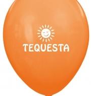 TEQUESTA 2
