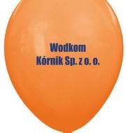 Wodkom Kornik 2