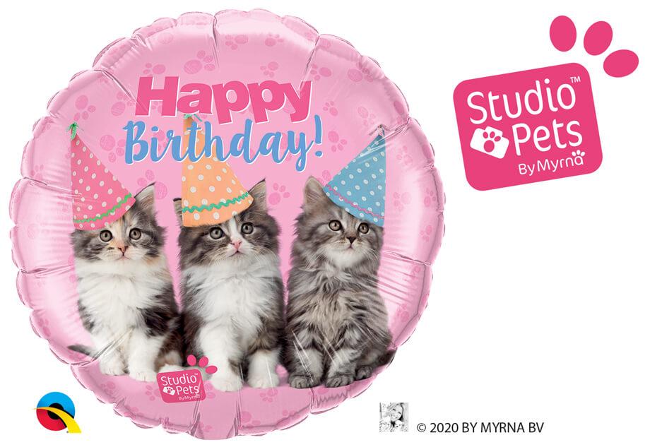18″ / 46cm Birthday Kittens Qualatex #57623