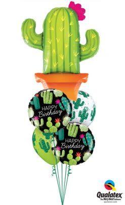 Bukiet 1200 Happy Birthday Cacti Qualatex #78652 78662-2 80570-2